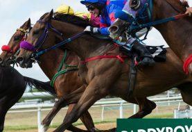 Neueste Pferderennen Wett-Tipps: Warum Expert Eye ist das Pferd, um zurück zu gewinnen, um die 2.000 Guineas bei einem leckeren 9/1 zu gewinnen