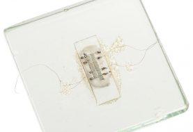 Der erste Mikrochip der Welt kann für 600.000 $ zu Ihnen gehören