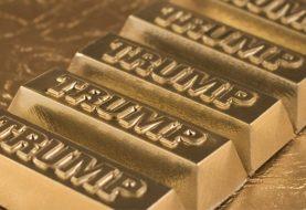 James Turk - Ist Präsident Trump in der Lage, echtes Geld (Gold & Silber) wieder groß zu machen?